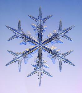 Courtesy of SnowCrystals.com